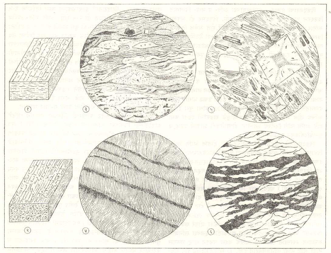 आ. १. रूपांतरित खडकांतील संरचना : (१) पटली सुभाजन, (२) रेखीय सुभाजन, (३) न्यपदलिकाश्म, (४) स्लेटचे प्रतिविकृती सर्पण पाटन, (५) ठिपकेदार संरचना, (६) नेत्री संरचना.