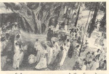 वटसावित्री व्रतपूजा : रामाचा पार,महालक्ष्मी मंदिर-परिसर,कोल्हापूर.