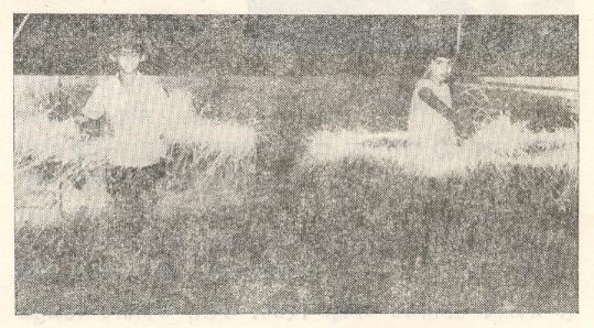 दिवाळी:फुलबाज्या उडवण्यात तल्लीन झालेली मुले.