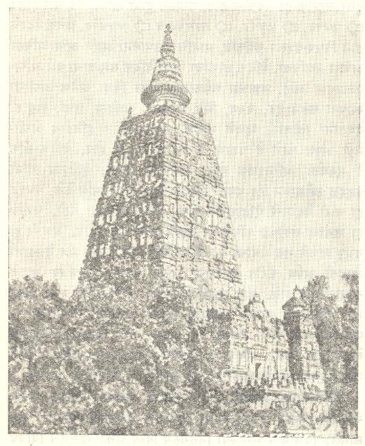 महाबोधी मंदिर, बोधगया (बिहार).