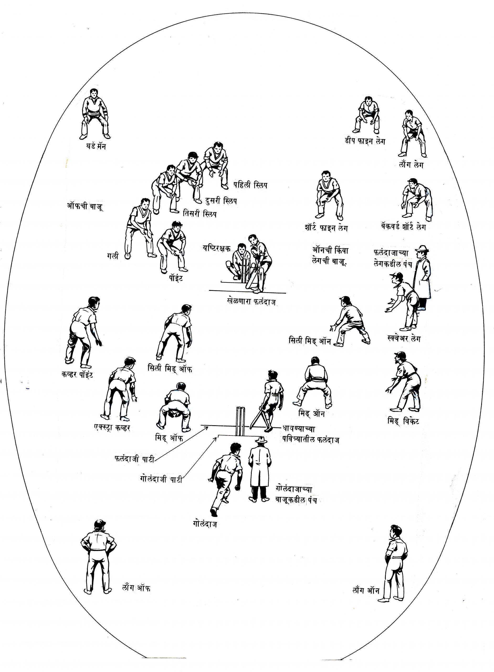 क्रिकेटची क्षेत्ररचना